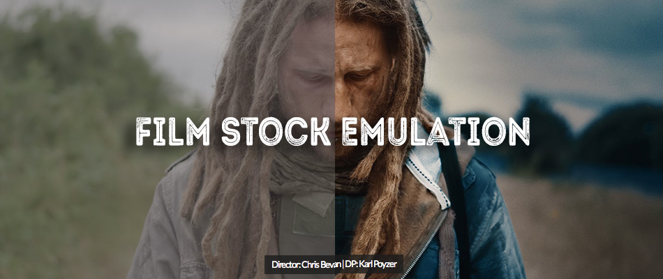 Stock options movie cast
